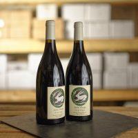 VDF Seibel Rouge Vin et Pic